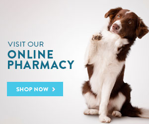 Shop the Chenoweth Animal Hospital Online Pharmacy